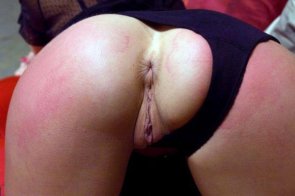 Quel joli anus plissé !
